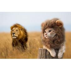 """Костюм для кошек и собак """"Лев"""""""
