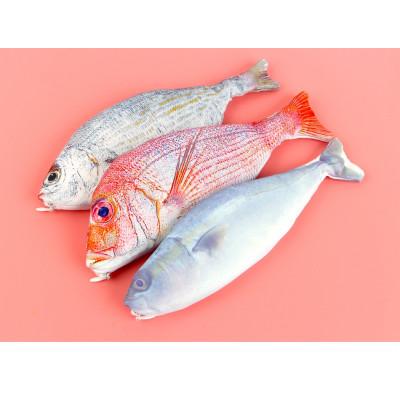 Пенал Рыба Fresh fish