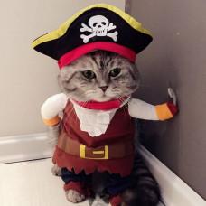 Костюм пирата для кошек и собак
